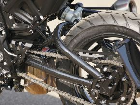 Chain Guard Indian FTR 1200 / S